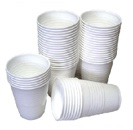 Disposable Drinkware