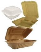 Eco-Friendly Bagasse Hinged Containers