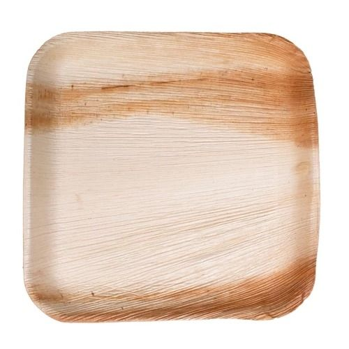 VerTerra 01-20-20B 8-inch Eco-Friendly Square Palm Leaf Plate, 300/CS