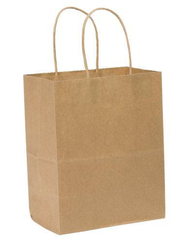 SafePro TEMB, 8x4x10-Inch Kraft Paper Shopping Bag with Handles, 250/CS